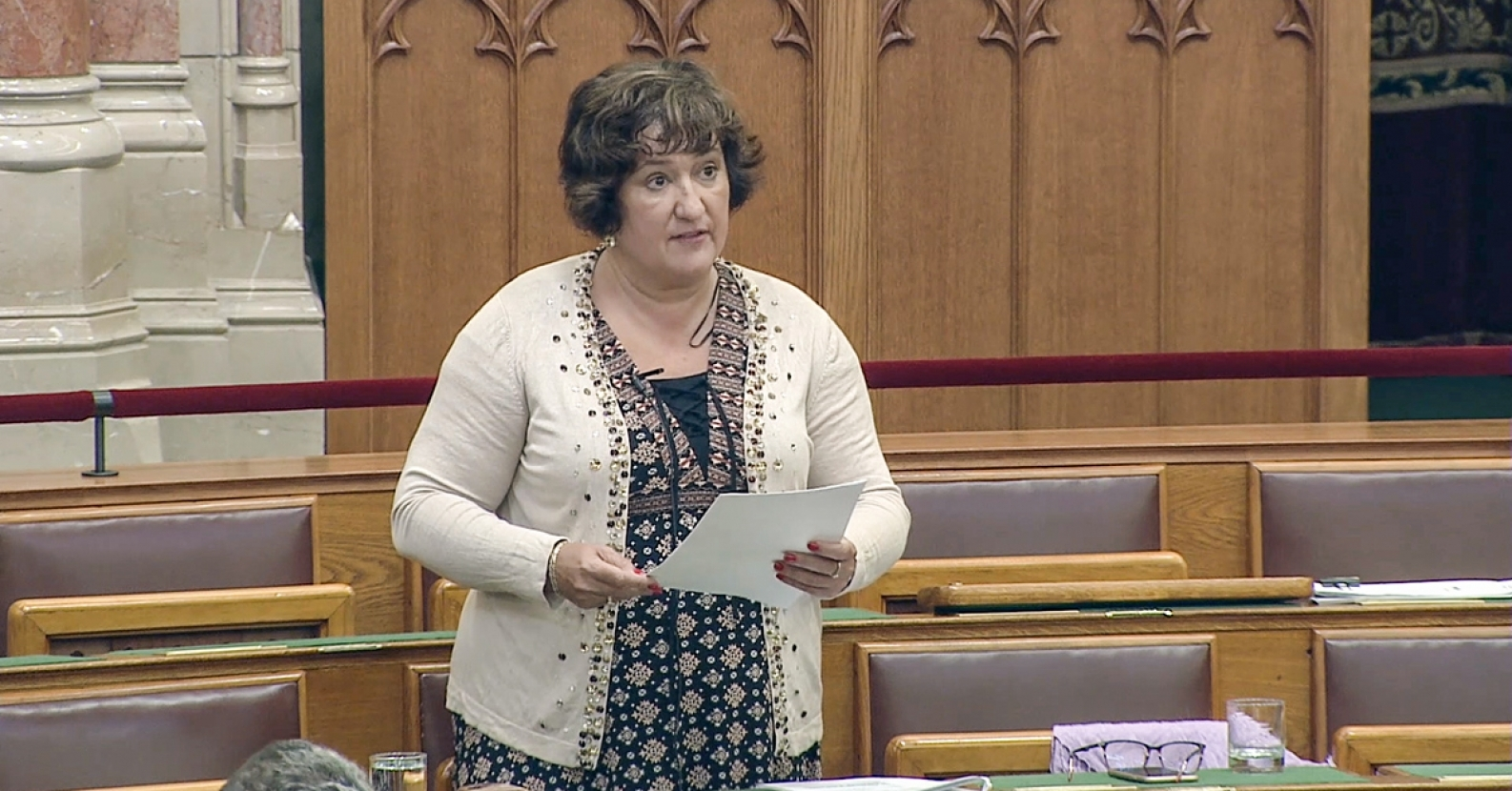 "Zita Gurmai: ""I Hope Fidesz Will Not Stand by Wife Beating MPs Much Longer"""